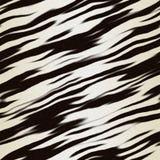 Pelliccia della zebra Fotografia Stock Libera da Diritti