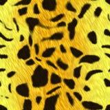 Pelliccia macchiata della pelle animale Fotografie Stock