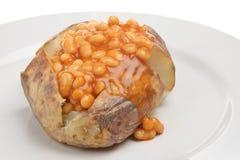 Pellkartoffel mit gebackenen Bohnen Stockbilder