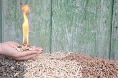 Pelllets-biomassa Stock Foto's