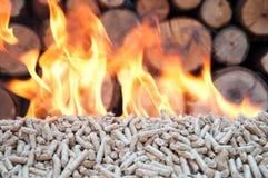 Pelllets- biomassa Arkivfoto