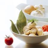 Pelmeni饺子馄饨蕃茄月桂叶白色背景丁香,茴香,反射美妙地镀开胃食物 免版税库存照片