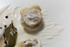Pelmeni,酸性稀奶油,月桂叶,胡椒,俄国饺子 免版税图库摄影