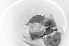 Pelmeni,酸性稀奶油,月桂叶,胡椒,俄国饺子 库存照片