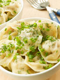Pelmeni Royalty Free Stock Image