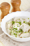 Pelmeni Royalty Free Stock Photo