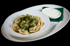 Pelmeni Royalty Free Stock Photos