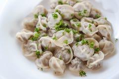 Pelmeni avec des verts dans un plat blanc Photos libres de droits