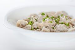 Pelmeni avec des verts dans un plat blanc Images libres de droits