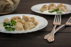 Pelmeni - culinária do russo, bolinhas de massa da carne Foto de Stock Royalty Free