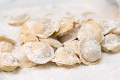 Pelmeni in a flour Royalty Free Stock Photography