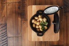 Pelmeni frit de boulettes de viande, chuchpara Photographie stock