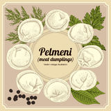 Pelmeni. Meat dumplings. Food. Stock Photography