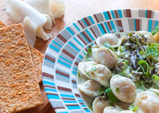 Pelmeni (meat dumplings) with greens Stock Image