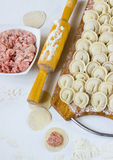 Pelmeni Stock Photo