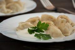Pelmeni - Russian cuisine, meat dumplings Stock Image