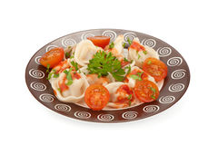 Pelmeni. Russian cuisine Royalty Free Stock Images