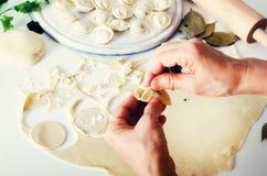 Pelmeni russo tradizionale, ravioli, gnocchi con carne su fondo concreto bianco Prezzemolo, uova di quaglia, pepe Fotografie Stock Libere da Diritti