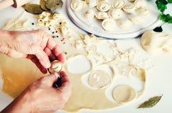 Pelmeni russo tradizionale, ravioli, gnocchi con carne su fondo concreto bianco Prezzemolo, uova di quaglia, pepe Fotografia Stock