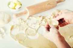 Pelmeni russo tradizionale, ravioli, gnocchi con carne su fondo concreto bianco Prezzemolo, uova di quaglia, pepe Fotografia Stock Libera da Diritti
