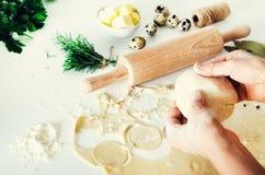 Pelmeni russo tradizionale, ravioli, gnocchi con carne su fondo concreto bianco Prezzemolo, uova di quaglia, pepe Immagine Stock