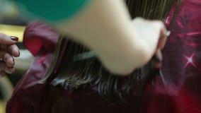Pelo de los clientes del corte del peluquero almacen de video