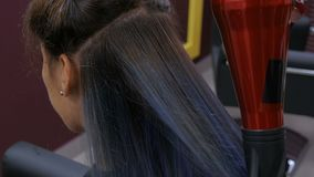 Pelo de sequía del cliente del peluquero profesional almacen de metraje de vídeo