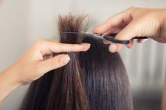 Pelo del corte del peluquero del primer de la mujer imagen de archivo