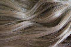 Pelo hermoso Pelo marr?n rizado largo Coloración en color marrón claro natural imágenes de archivo libres de regalías