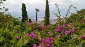 Pelo jardim de Bahim, haifa, Israel Foto de Stock
