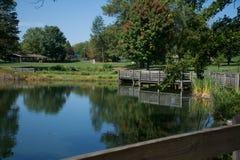 Pelo lago Foto de Stock Royalty Free