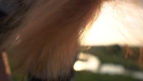 Pelo largo rojo del cierre de la muchacha para arriba durante peinarse en la puesta del sol en la cámara lenta almacen de metraje de vídeo