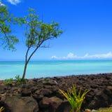 Pelo mar em uma ilha tropical Fotos de Stock