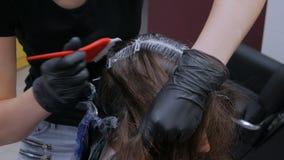 Pelo profesional del colorante del peluquero del cliente de la mujer en el estudio almacen de video