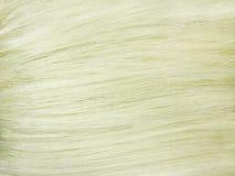 Pelo rubio como fondo de la textura Foto de archivo libre de regalías