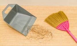 Pelo sucio de la alopecia en piso laminado con la escoba y d fotografía de archivo