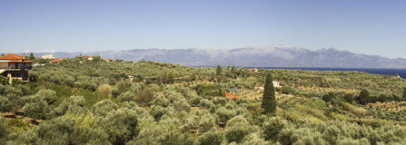 Peloponnese countryside Stock Photos