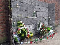 Pelotón de fusilamiento de Auschwitz Imágenes de archivo libres de regalías