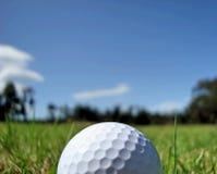 Pelota de golf (ascendentes cercanos) Fotos de archivo libres de regalías