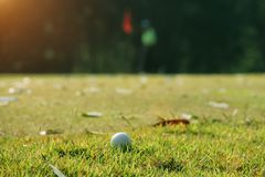 Pelota de golf borrosa en verde en el campo de golf de la tarde con el sunsh Foto de archivo libre de regalías