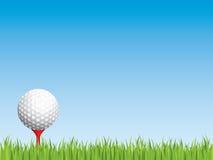 Pelota de golf con la hierba inconsútil