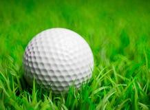 Pelota de golf en campo de hierba Fotos de archivo