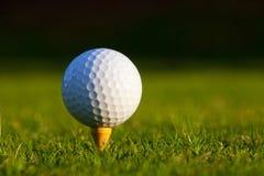 Pelota de golf en cierre de la te para arriba Fotografía de archivo libre de regalías