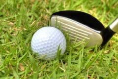 Pelota de golf en el áspero imagenes de archivo