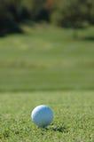 Pelota de golf en el curso Fotografía de archivo