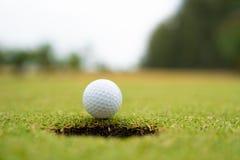 Pelota de golf en el labio del cierre de la taza para arriba, pelota de golf en el césped fotos de archivo