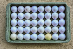 Pelota de golf en la cesta de plástico Imagenes de archivo