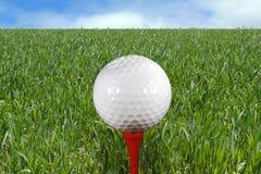 Pelota de golf en te foto de archivo