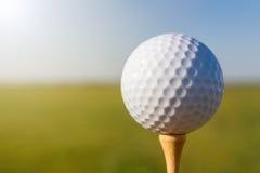 Pelota de golf en te Cierre para arriba Foto de archivo libre de regalías