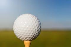 Pelota de golf en te Cierre para arriba Imagen de archivo libre de regalías